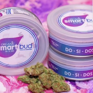 Buy Smart Buds Online