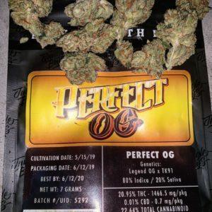 Buy Jungle Boys Perfect OG