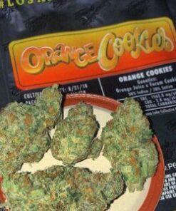 Jungle Boys Orange cookies