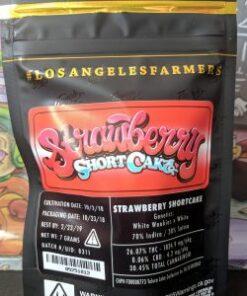 Buy Jungle Boys Strawberry Shortcake