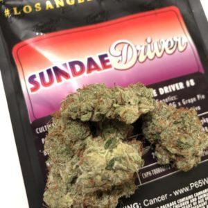 Buy Jungle Boys Sundae Driver