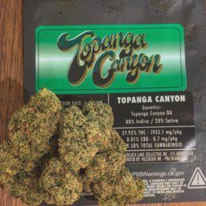 buy Jungle Boys Topanga Canyon